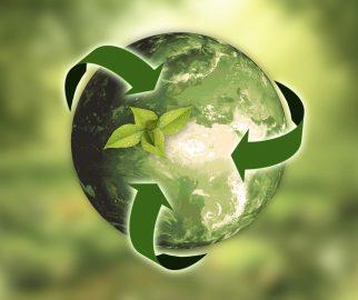 Afvalscheiding, een stap naar duurzaam ondernemen!